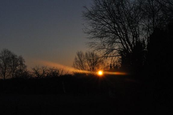 Osternacht 2017: Sonnenaufgang, Bäume