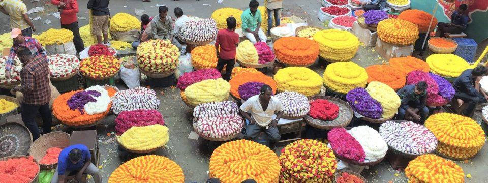 Blumenmarkt in Bengaluru